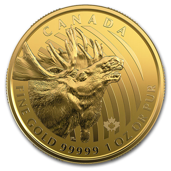 2019 RCM Call of the Wild Moose - 1 Troy Oz .99999 Gold
