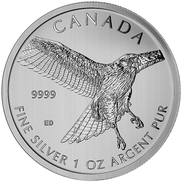 Canadian Birds of Prey -