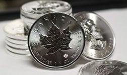 Silver Maple Leafs Design