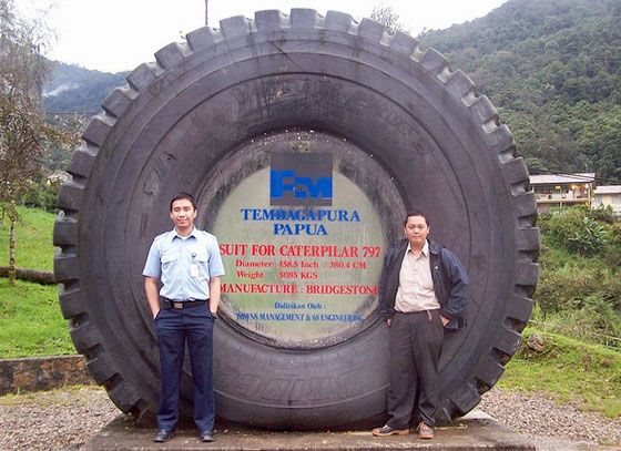 Caterpillar 797 Tire