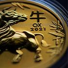 Futures Market Speculators Crushed Again Featured