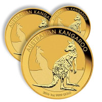 Buy Gold Kangaroos