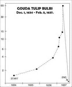 Goulda tulip bulbs
